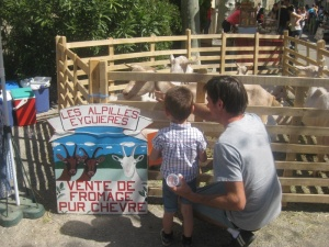 Learning about goats in Rognes