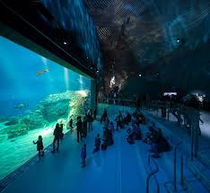 The Marseille Aquarium should be as stunning as the Blue Planet in Copenhagen