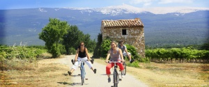 cycling-ventoux